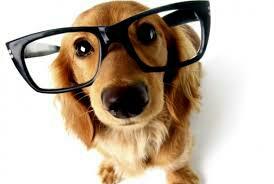 :)npham017 Dre Nga Pham, optométriste - Optometrist