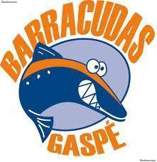 Club de Natation de Barracudas (BG) - Sports Club